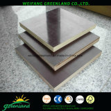 Hardwood Core Marine Plywood with Film for Construction