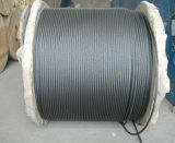 Steel Wire Rope 6X7+FC, 7X7 for Rubber Hose