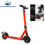 Two Wheel Smart Self Balance Folding Electric Scooter
