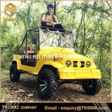 Chinese Cheap Good Quality Electric Jeep Car 300cc with 2 Seats or 4 Seats