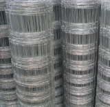 Long-Life Fixed Knot Woven Wire Mesh/ Horse Fence/Netting