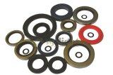 Oil Seals for Auto Parts