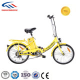Cheap Foldable E-Bike in Chian