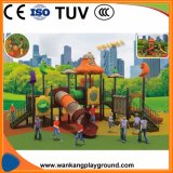 Playground Kids Outdoor Playground Equipment Prices (WK-A1215)