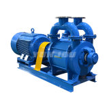 Sk 2sk 2be China Electric Stainless Steel Single Two Double Stage Liquid Water Ring Vacuum Pump (System)