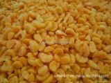 IQF Mandarin Oranges Segments, Frozen Mandarin Oranges Segments