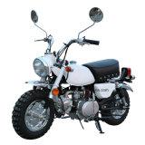 50cc Low Position Monkey Bike Gasoline Motorcycle EEC Euro4