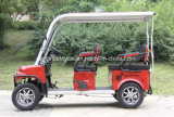 Cheap Mini Electric Sightseeing Car Scooter Golf Car with 4-6seats
