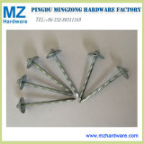 "Popular Size Bwg9*2.5"" Umbrella Head Twisted Roofing Nail"