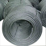 Good Quality Galvanized Fishing Steel Wire Ropes with Fibre Core