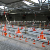 Whole Set Automatic Poultry Farming Equipment for Chicken