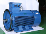 Chinese Cheapest Electric Motor on Line with Ce Approval
