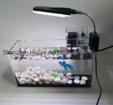 2020 Factory Directly Supply Acrylic Square Aquarium Can Be Customized Transparent Manufacturers Direct