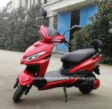 Bicicleta Electrica Motos Electricas Chinas 800W/1000W/1200W MID Drive Electric Bike (falcon J-31)