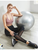 Fashion Mesh Splicing Pants Gym Running Fitness Wear Sexy Sports Underwear Yoga Suit for Women Sport Clothing
