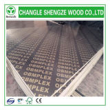 1220*2440*18mm Melamine Printed Logo Formwork Plywood