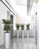 Stainless Steel Garden Pot, Indoor&Outdoor Decoration
