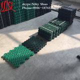 Plastic Grass Paver Grid for Parking Lot with Favourable Price
