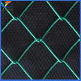 PVC Coated Chain Link Wire Mesh (Professional Manufacture)