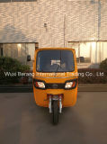 Berang Electric Re Rickshaw Tvs Bajaj Piago