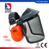 Jsp Wire Mesh Face Shield Visor with Earmuff Combination Ce Passed