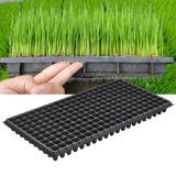 Seed Tray 1020 Flat Holes Hard Plastic Nursery Seed Tray Vegetable Nursery Propagation Seed Tray PVC/PS Greenhouse Seed Tray Germination Plant Thermoformed Seed