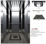 Competitive Elevator China Supplier with TUV Certificate (LL-010)