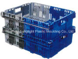 Plastic Injection Foldable Container Mould