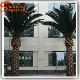 Outdoor Decorative Fake Artificial Date Palm Tree