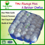 Supplier of Natural China New Crop Fresh Pure White Garlic with Good Price