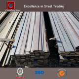 ASTM A36 Hot Rolled Mild Steel Flat Bar (CZ-F51)
