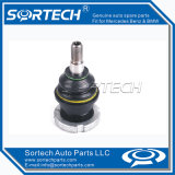 Auto Parts Ball Joint for Mercedes-Benz W163 1633300113