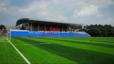 Artificial Grass / Synthetic Turt for Football Field Basketball Court