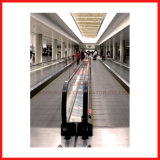 Speed 0.5m/S and Reliable Main Drive Motors for Moving Walkways