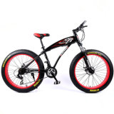 New 26 Inch 21 Speed Bikes Mountain Bicycle Fat Bike with Factory Price