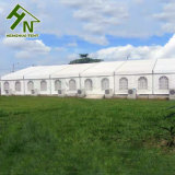 Wholesale Durable White Outdoor Wedding Party Marquee
