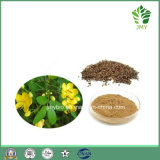 Cassia Seed Extract Cassia Obtusifolia Extract 5: 1-20: 1