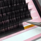 Wholesale Extension Private Label China 3D Mink Eyelashes Supplies Individual Volume Eyelash Extension