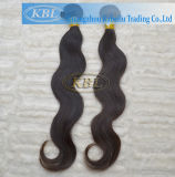 Remy Cambodian Hair Vendors Wholesale Peruvian Hair (KBL-pH-BW)
