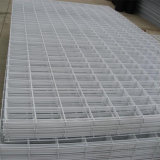PVC Welded Wire Mesh Panel/Sheet
