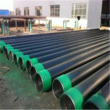 Best Price Hot Rolled Round ASTM A106 Sch 40 Seamless Steel Pipe for Gas and Fluid