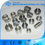 Socket Weld Pipe Fitting High Pressure Pipe Fitting Price