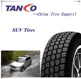 Sport Truck & SUV Tires (65 70 75 85 Series)