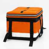 Disposable Cooler Bag for Beer with Good Price