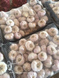 2017 Fresh White Garlic Quality Agriculture Wholesale China/Garlic