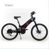 China Wholesale City Electric Bike with PAS