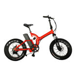 Best Price Folding Electric Folded Bike Bicycle with F/R Suspension