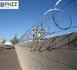 Competitive Price with Best Selling Concertina Razor Wire Cbt 65 ISO 9001