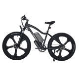 Dual Motor Mountain Electric Bike with Integrated Molding Rims