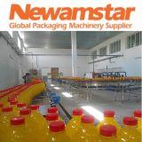 Newamstar Pet Bottled Juice Filling Machine